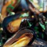 mussel - blog title