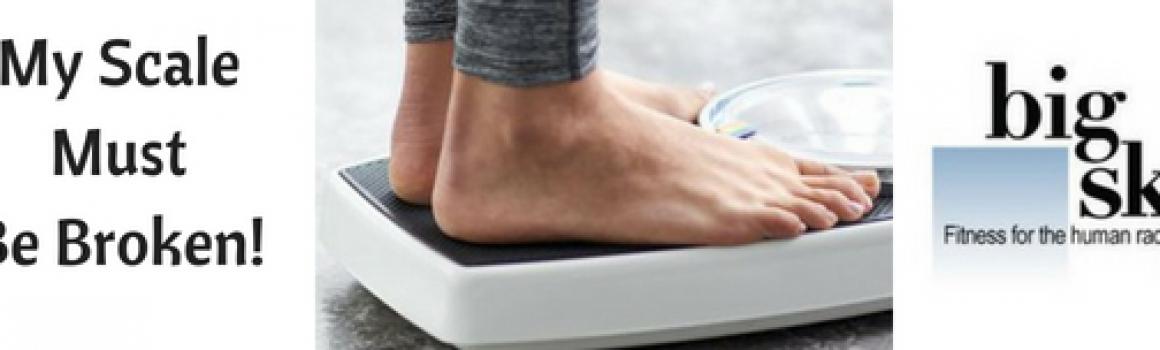 My Scale Must Be Broken!