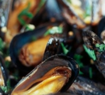 Steamed Mussels with White Wine Broth